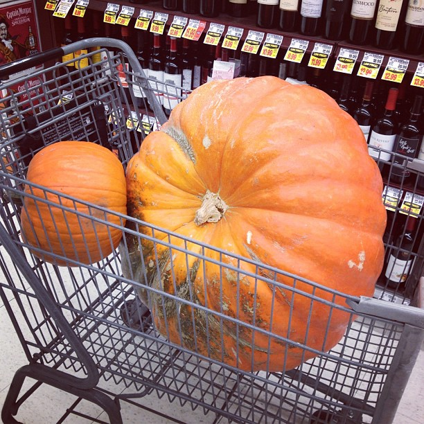 Remember that $70 pumpkin I posted a pic of last month? It's on clearance for $10.